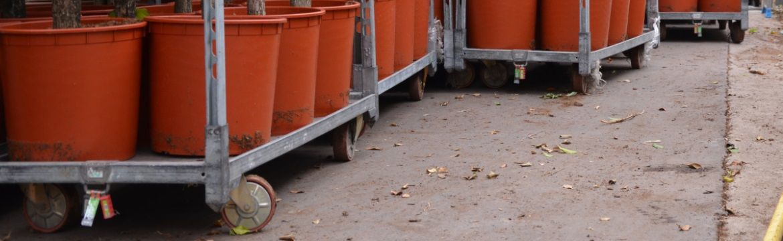 Deense kar met potplanten bij Fachjan