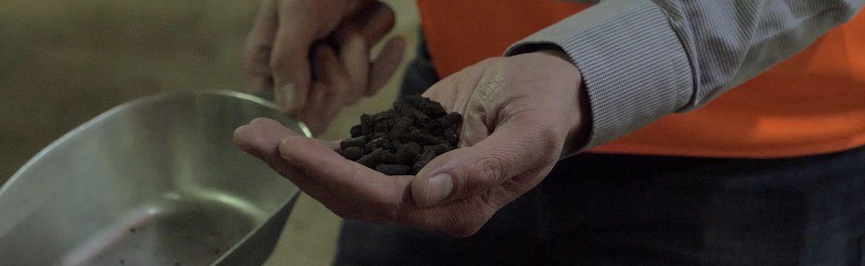 Wat zijn organische meststoffen?