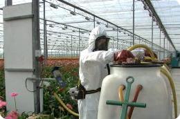 Welke persoonlijke beschermingsmiddelen moet je dragen als je werkt met gevaarlijke stoffen?