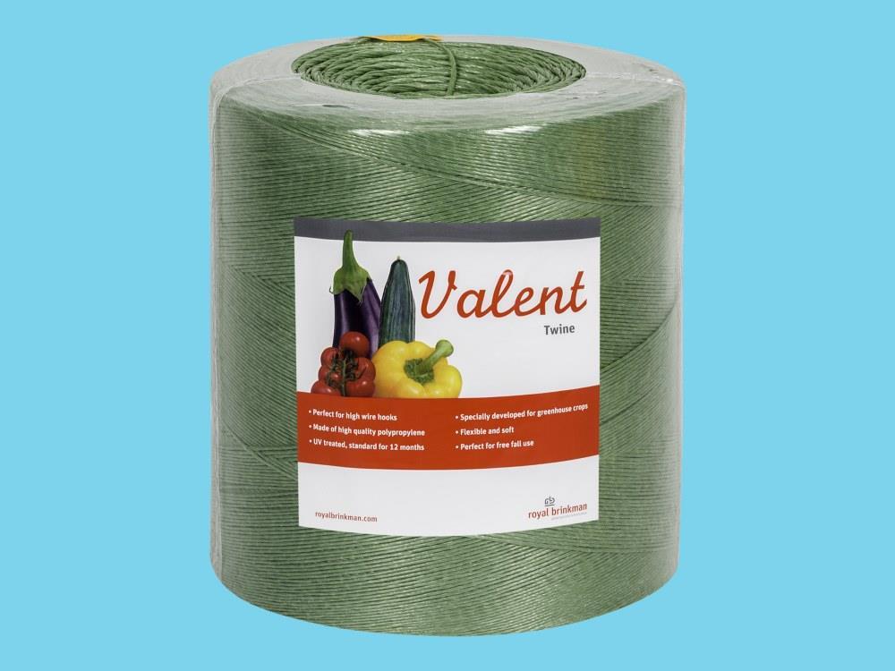 Touw Valent Twine 1/1500 groen 6 kg