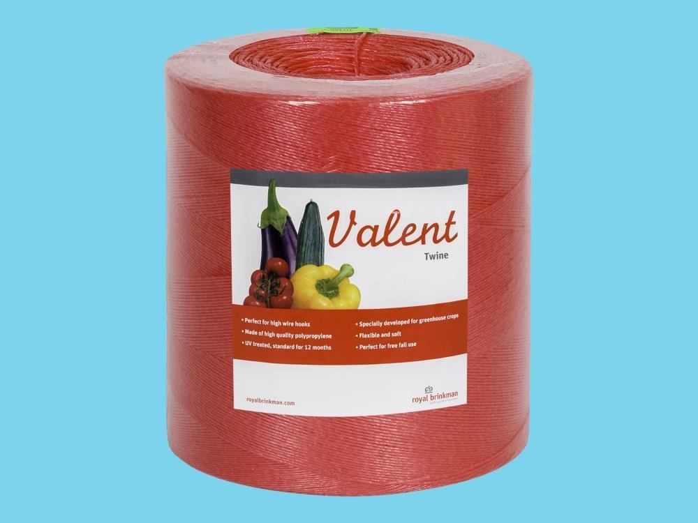 Touw Valent Twine 1/1500 rood 6 kg