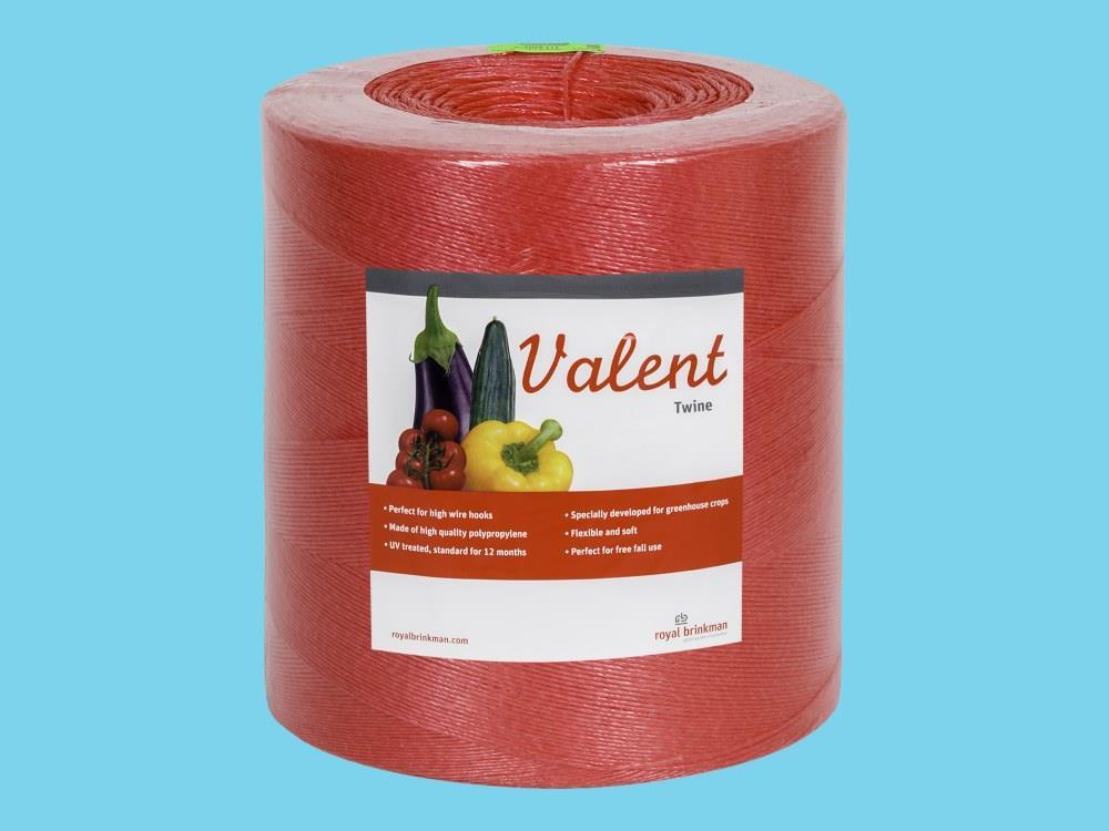 Touw Valent Twine 1/1200 rood 6kg