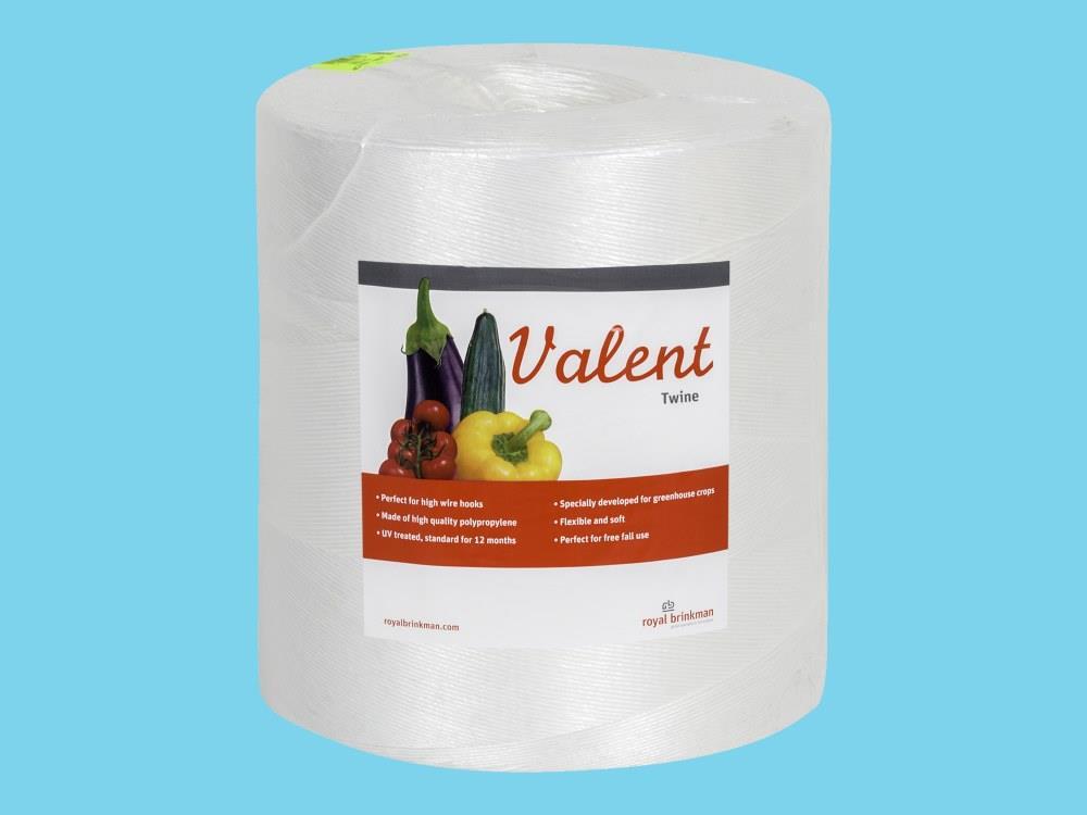 Touw Valent Twine 1/1500 wit 6kg