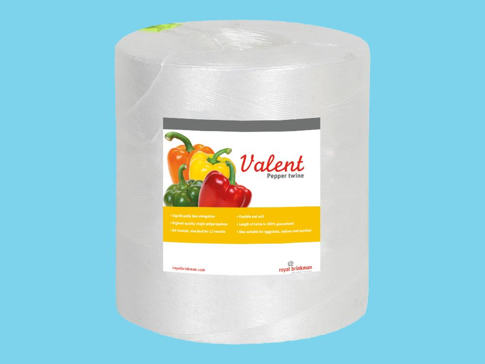 Valent Pepper touw 1/1500 wit 6kg