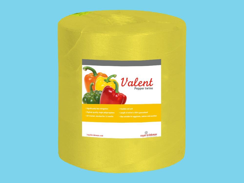 Valent Pepper touw 1/1500 geel 6kg