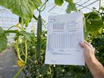 Aantonen nul-lozing glastuinbouwbedrijven