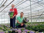 Hoe kies je de juiste bloemen- of plantenhoes?